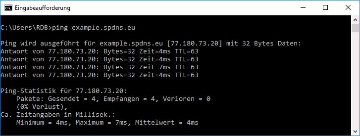 Ping auf eine DynDNS-Adresse